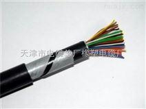 信号电缆PTYA23 9芯_电线