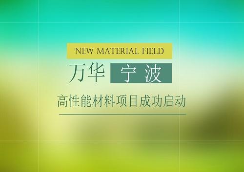 万华宁波高性能材料项目成功启动,将推动我国新材料领域发展