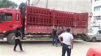 宜城工地自动建筑洗轮机工程车冲洗设备